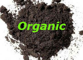 Organic Vanilla Bean Powder 125g - Click Image to Close
